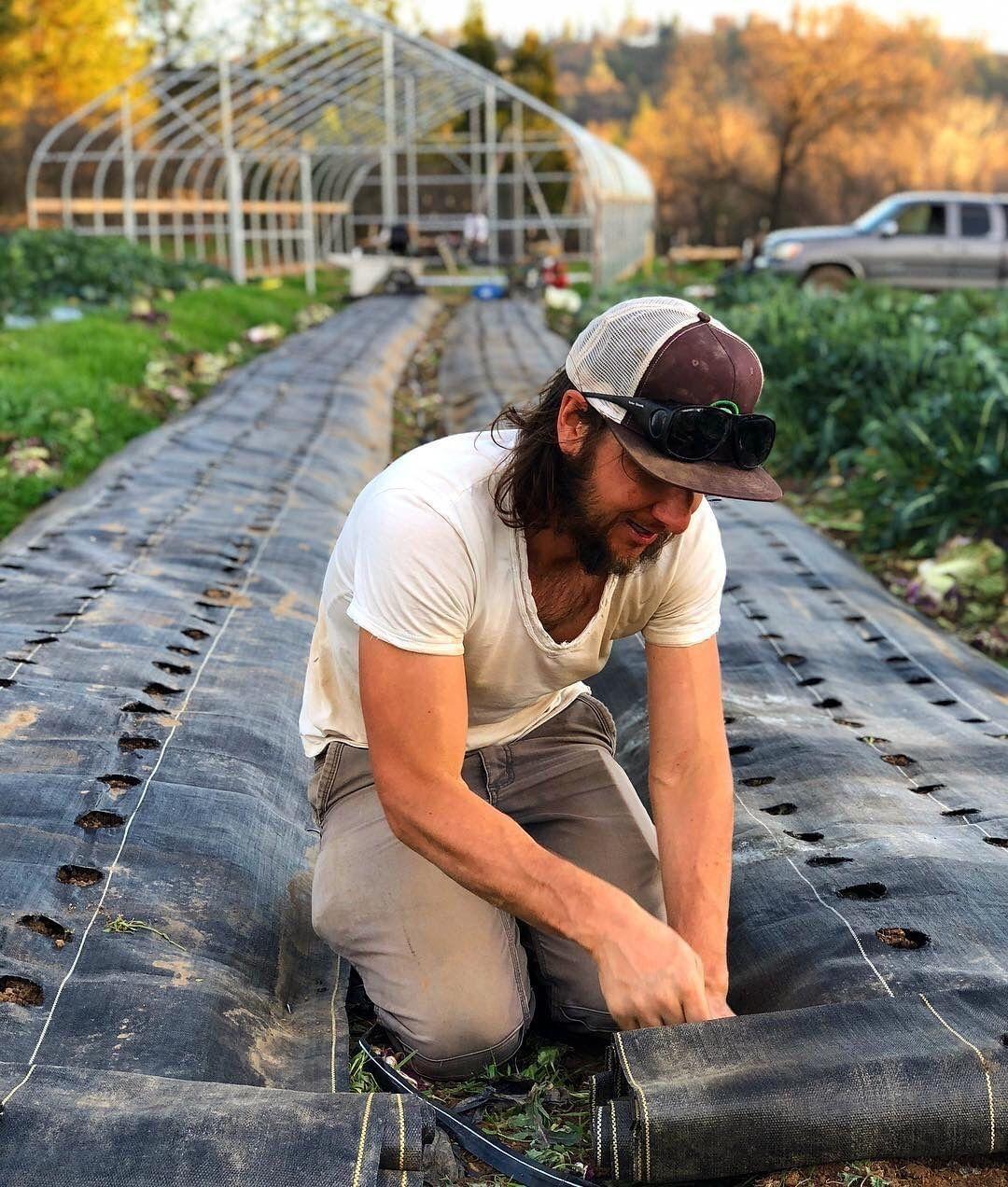 Đục lỗ trên màng phủ nông nghiệp bằng cách thủ công